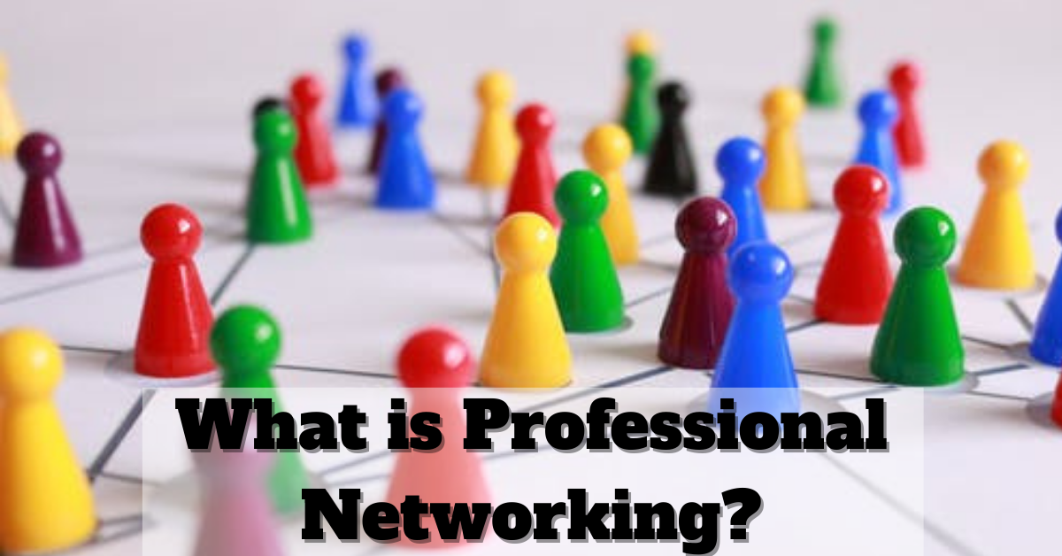 what is professional networking